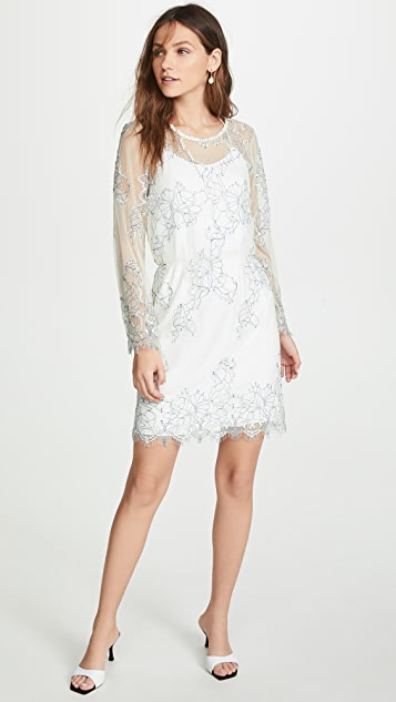 Loyd/Ford Corded Lace Dress