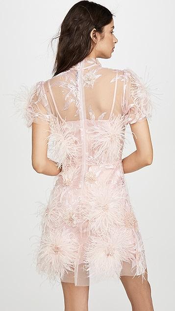 macgraw 植绒连衣裙