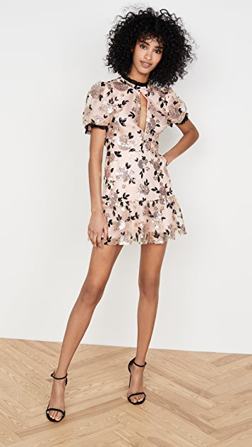 macgraw Sparrow Dress