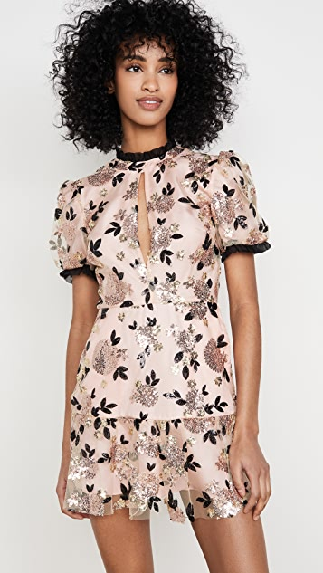 macgraw Sparrow 连衣裙