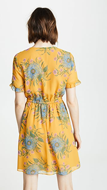 Madewell Sweetgrass Ruffle Sleeve Dress in Painted Blooms