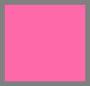 粉色蜥蜴纹