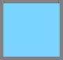 蓝色蜥蜴纹