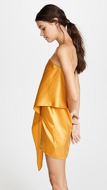 Michelle Mason Strapless Dress