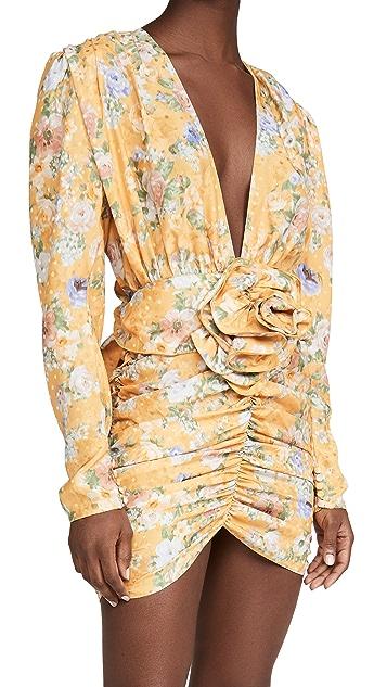 Magda Butrym Floral Dress