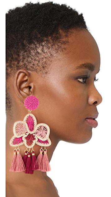 Mercedes Salazar Orquidea Rosa Clip On Earrings