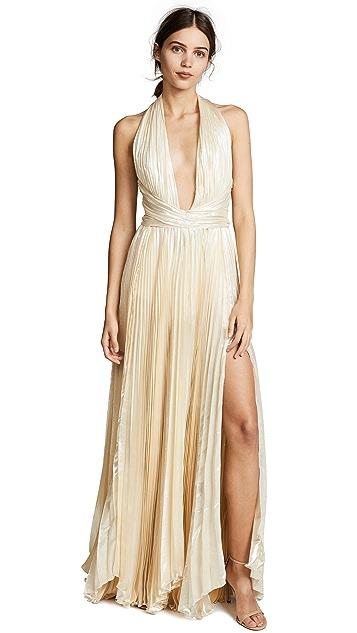 Maria Lucia Hohan Floor Length Dress