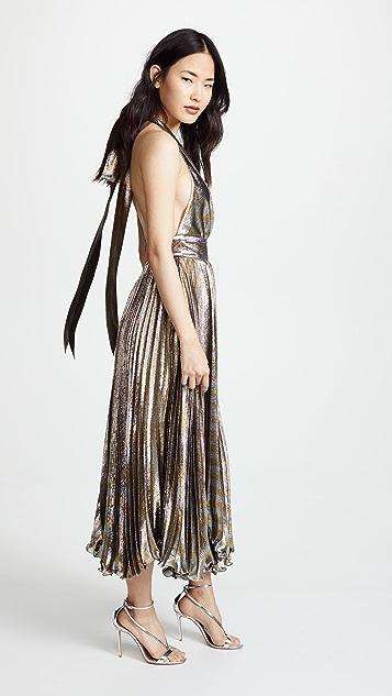 Maria Lucia Hohan Gwen Dress