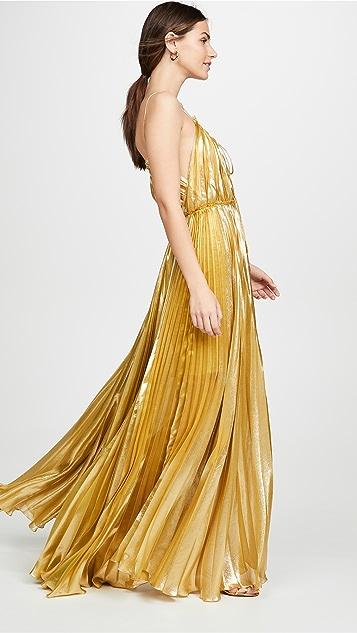 Maria Lucia Hohan Макси-платье Sayan