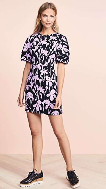 Milly Kyle Dress