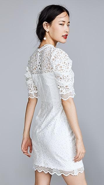Milly Kara Dress