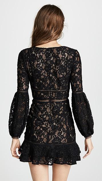 Misha Collection Harper Dress