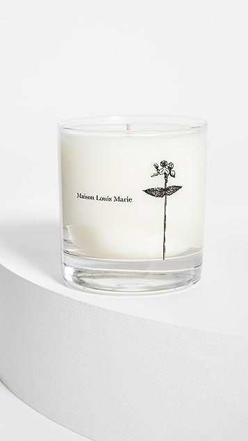 Maison Louis Marie Antidris Cassis Candle