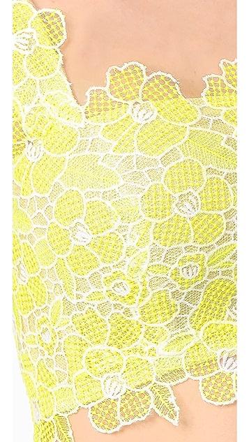 Monique Lhuillier Lace Crop Top