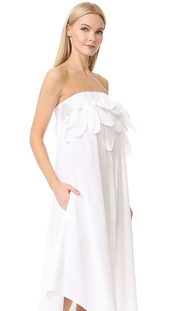 MSGM Strapless Poplin Ruffle Dress