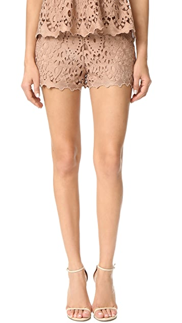 Ministry of Style Lush Lace Shorts