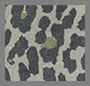 Military Green Leopard
