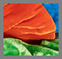 Azure/Parrot Green/Orange