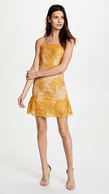 Nicholas Octavia Lace Scallop Mini Dress