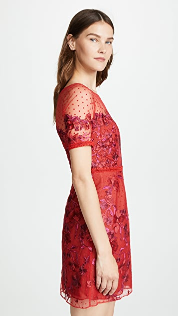 Marchesa Notte Cap Sleeve Boat Neck Embroidered Tulle Cocktail