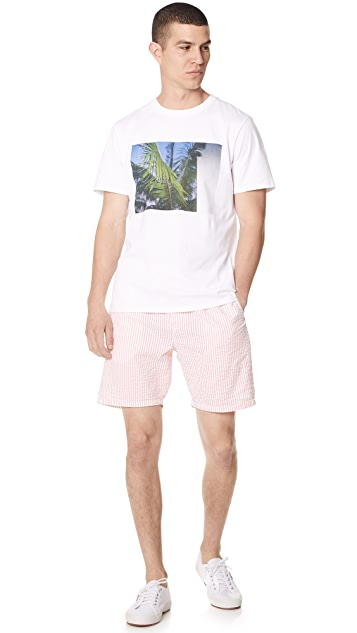 Obey Cypress Shorts