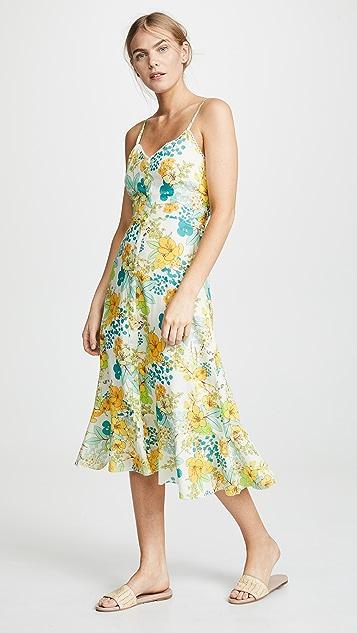 Valencia Amp Vine Lilly Cami Dress