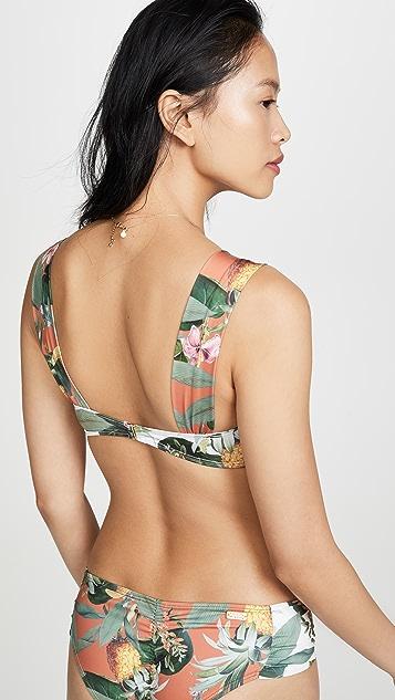 Palmacea Pina Bikini Top