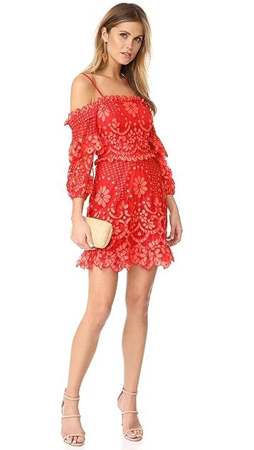 Parker Платье Irma