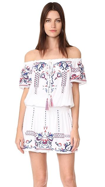 Parker Tammy Dress