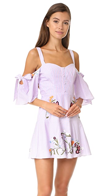 Parker Naya Dress