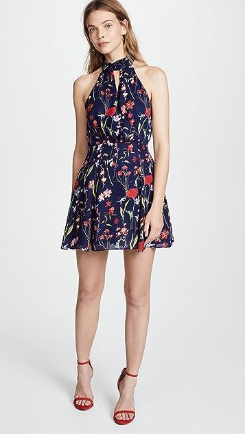 Parker Jolene Dress