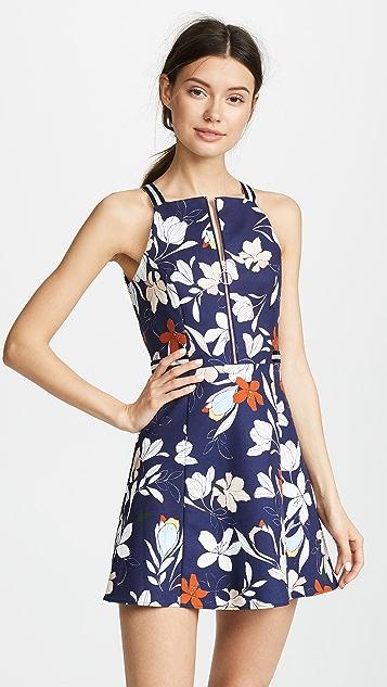 Parker Ronen Dress