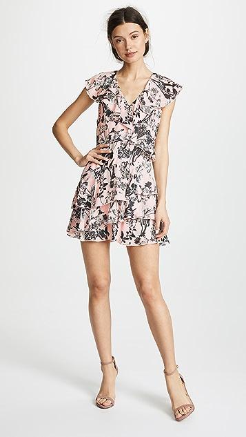 Parker Dorothy Dress