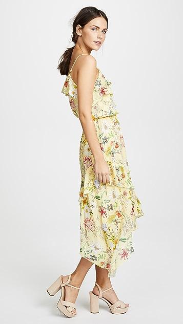 Parker Vanna Dress