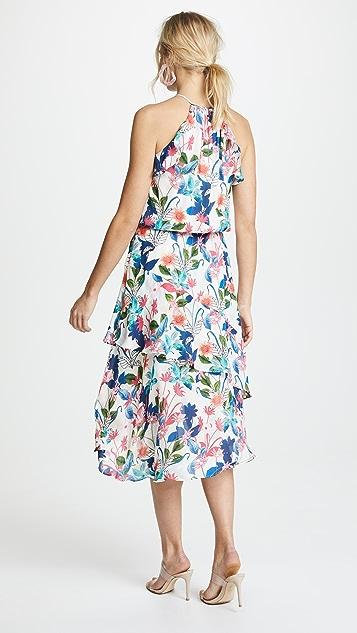 Parker Allister Dress