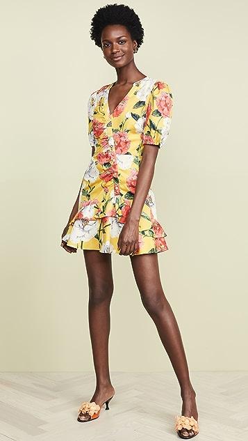 Parker Minna Dress