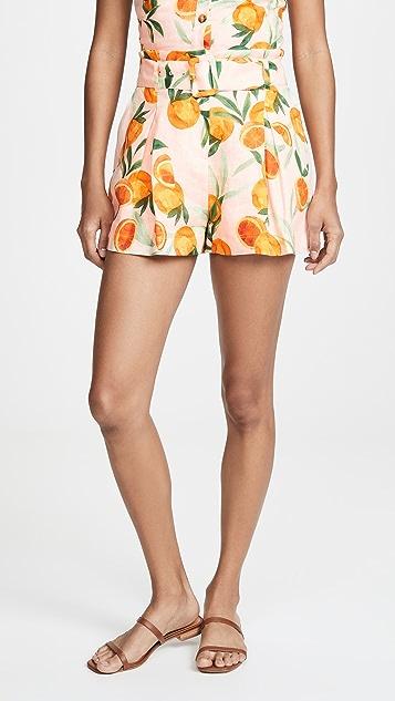Parker Carlo Shorts