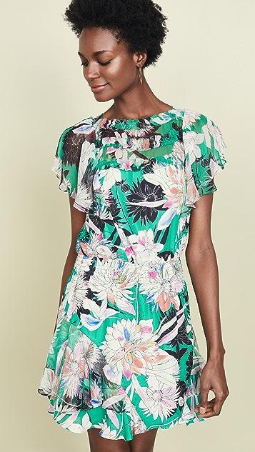 Parker Платье Acadia