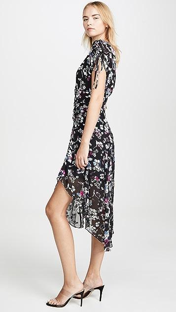 Parker Lizzy Dress