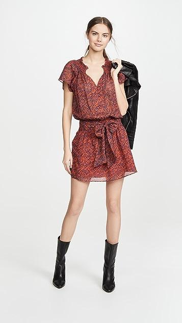 Parker Frisco Dress
