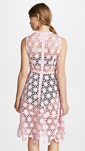 Paskal Fit and Flare Laser Cut Dress