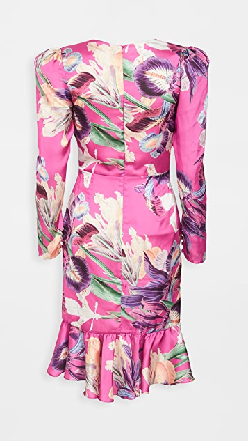 PatBO Grace Print Belted Knee Length Dress