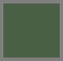 香根草绿色