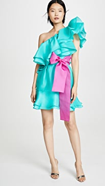 Giverny One Shoulder Ruffle Skirt Dress