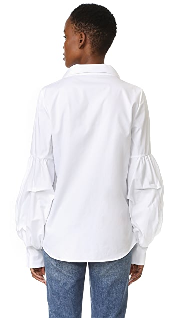 Petersyn Gillian Blouse