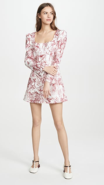 Petersyn Lilah 连衣裙