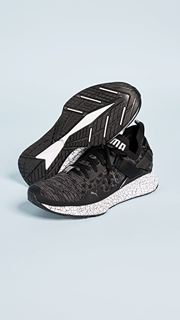 PUMA Ignite evoKNIT Lo Hypernature Sneakers