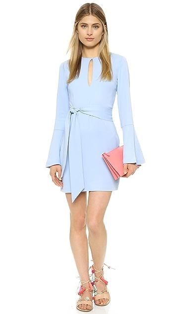 Rachel Zoe Matty Dress