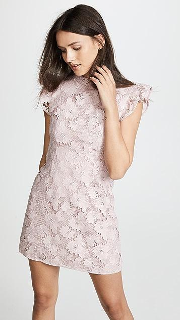 Rachel Zoe Alaya Dress