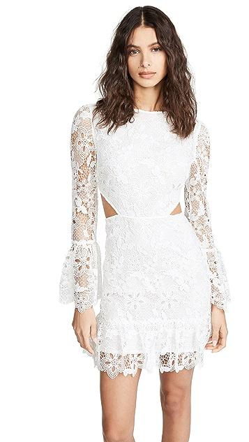 Rachel Zoe Isabel Dress